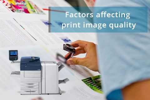 Factors affecting print image quality