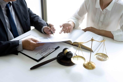 Essential Provisions of the Shareholder's agreement