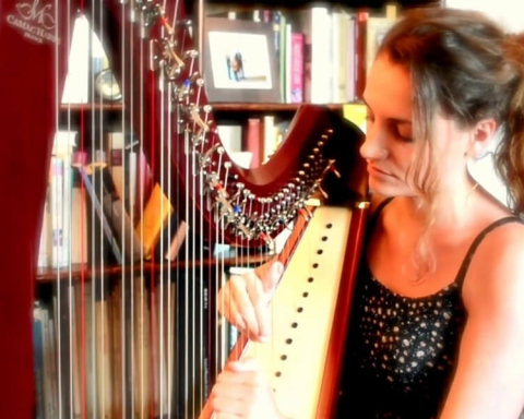 Modern Version Of Irish Harp Defines The Irish Music Traditions