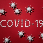 COVID-19 and Education: A Look Into How Schools Are Coping With the Crisis