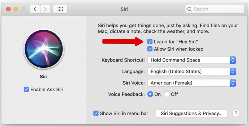 Listen and talk to your mac